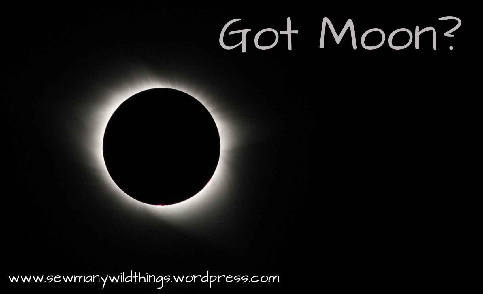 Got Moon? Eclipse Reflections