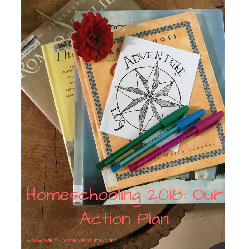 Homeschooling 2018: Our Action Plan