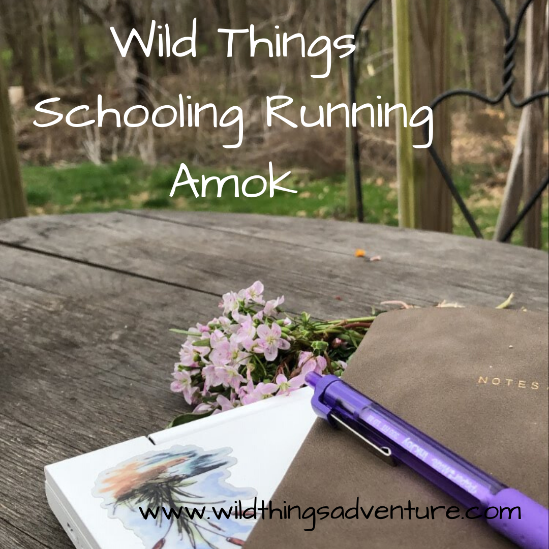 Wild Things Schooling Running Amok